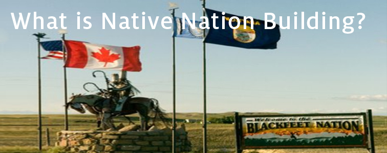 What is native nation building?