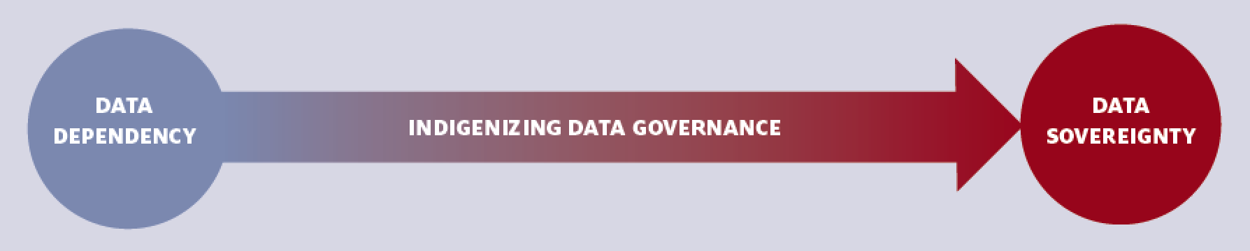 Policy Brief: Data Governance For Native Nation Rebuilding_Graphic